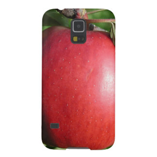 Red Apple with a Leaf Galaxy S5 Cover