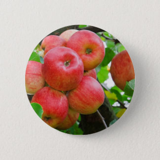 Red Apples on Tree 6 Cm Round Badge