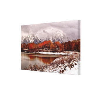 Red aspens reflections after first winter storm canvas print