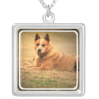 Red Australian Cattle Dog Necklace