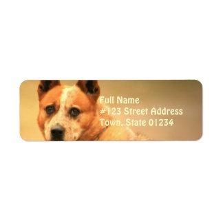 Red Australian Cattle Dog Return Address Label