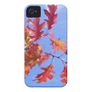 RED AUTUMN iPhone 4 CASE