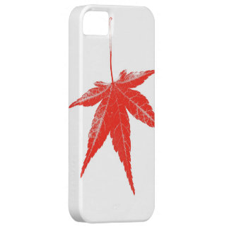 Red autumn leaf on white iPhone 5 cases