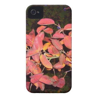 RED AUTUMN LEAVES BRANCH DARK Case-Mate iPhone 4 CASES