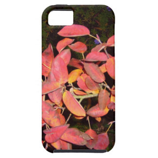 RED AUTUMN LEAVES BRANCH DARK CASE FOR THE iPhone 5