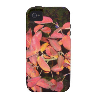 RED AUTUMN LEAVES BRANCH DARK iPhone 4/4S CASE