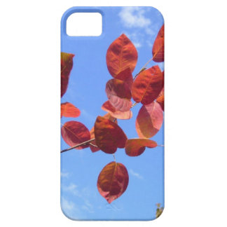RED AUTUMN LEAVES BRANCH IN HAND iPhone 5 CASE