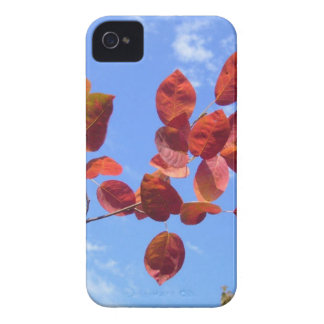 RED AUTUMN LEAVES BRANCH IN HAND Case-Mate iPhone 4 CASE