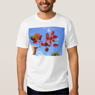 RED AUTUMN LEAVES BRANCH IN HAND TSHIRT