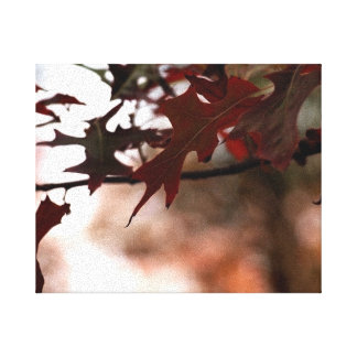 Red Autumn Leaves Canvas Canvas Print