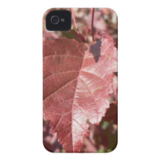 RED AUTUMN LEAVES iPhone 4 CASE