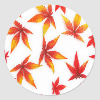 Red Autumn Leaves Classic Round Sticker