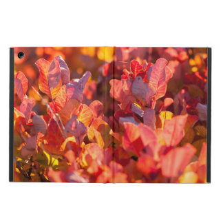 Red autumn leaves iPad air cases