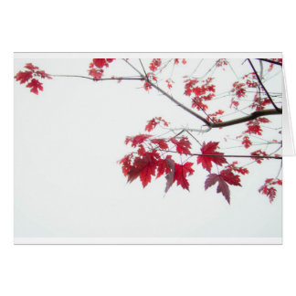 red autumn leaves on a branch greeting card
