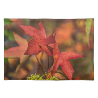 Red autumn leaves placemat
