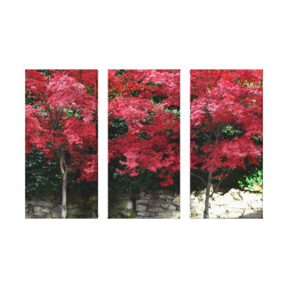 Red Autumn Trees Canvas Print