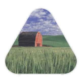 Red barn in wheat & barley field in Whitman 2