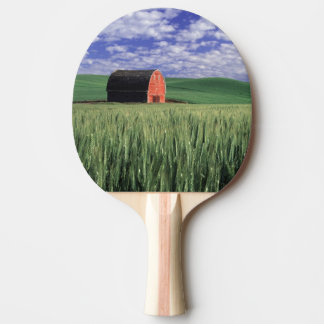 Red barn in wheat & barley field in Whitman 2 Ping Pong Paddle