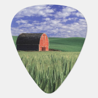 Red barn in wheat & barley field in Whitman Guitar Pick