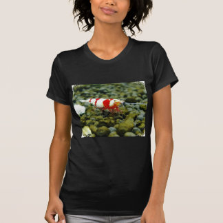 Red Bee Products Gift shop T Shirt