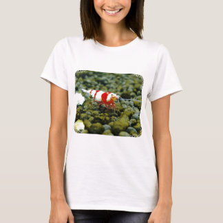 Red Bee Products & Gift shop T-Shirt