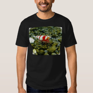 Red Bee Products & Gift shop Tee Shirts