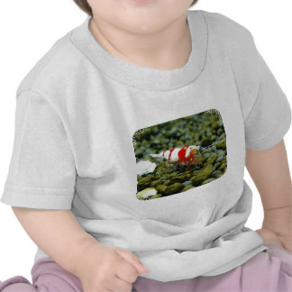 Red Bee Products Gift shop Shirt