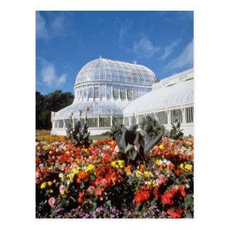Red Belfast, Palm House, Botanical Gardens, Irelan Postcard