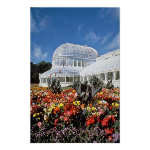 Red Belfast, Palm House, Botanical Gardens, Irelan Poster