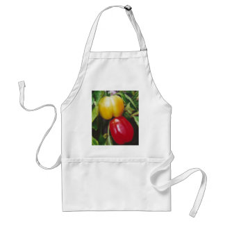 Red Bell Peppers Ripen on Plant with Leaves Apron