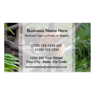 Red Bellied Lemur Hanging on back view Business Card Template