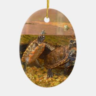 Red Bellied Turtle (Alabama) Ceramic Oval Decoration