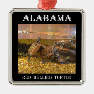 Red Bellied Turtle (Alabama) Silver-Colored Square Decoration
