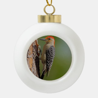 Red-bellied Woodpecker Ceramic Ball Decoration