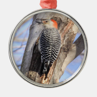 Red-bellied Woodpecker Round Metal Christmas Ornament