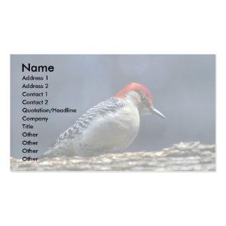 Red-bellied woodpecker, Deerfield, Illinois, U.S.A Pack Of Standard Business Cards