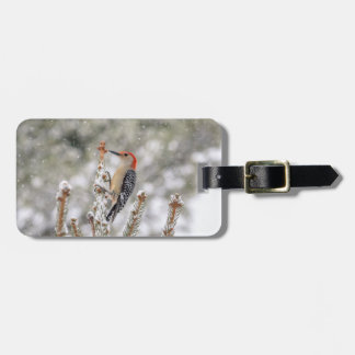 Red-bellied Woodpecker in the snow Luggage Tag