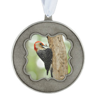 Red-Bellied Woodpecker Scalloped Pewter Ornament