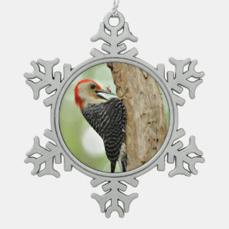 Red-Bellied Woodpecker Pewter Snowflake Decoration