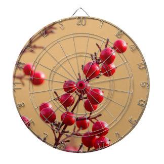 red berries in the garden dartboard