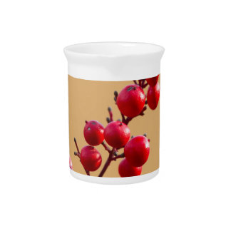red berries in the garden pitcher