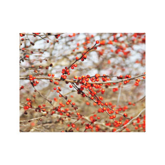 Red Berries Oil Painting Canvas Print