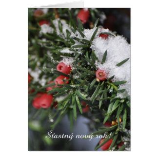 Red berries snow Czech New Year Card