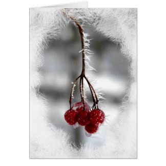 Red Berry Christmas Birthday Card