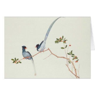 Red-billed blue magpies,a branch red berries card