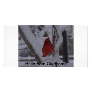 Red Bird Hello from Oklahoma Custom Photo Card