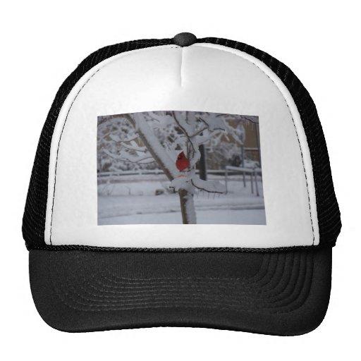 Red Bird (winter storm) Trucker Hat