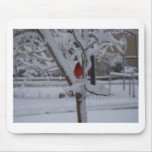 Red Bird (winter storm) Mousepad