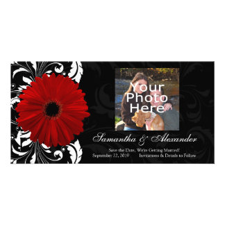 Red, Black and White Scroll Gerbera Daisy Custom Photo Card