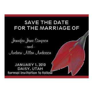 Red & Black Flower Save the Date Postcard